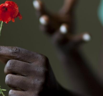 Poppies: Women and War