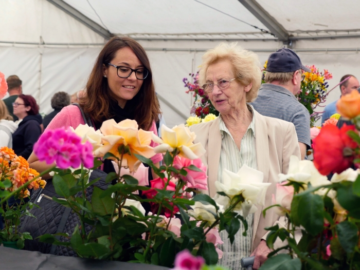 Knowsley Flower Show