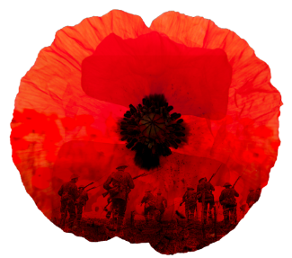 The Story Behind The Traditional Red Poppy At Remembrance