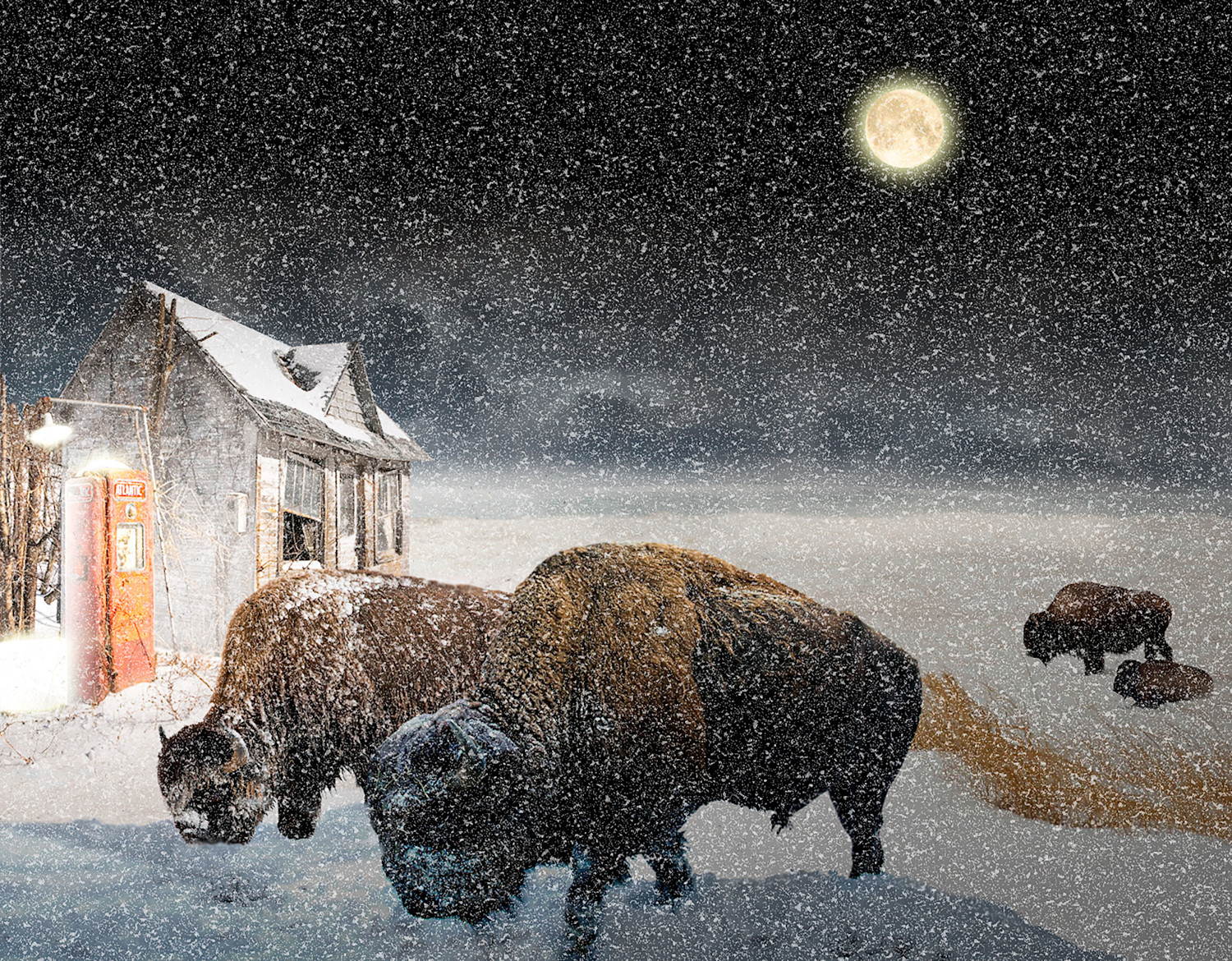 Pixel image by Vincent Kelly of Buffalo Winter in the dot-art gallery