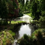 image of lake in park with green trees and bushes