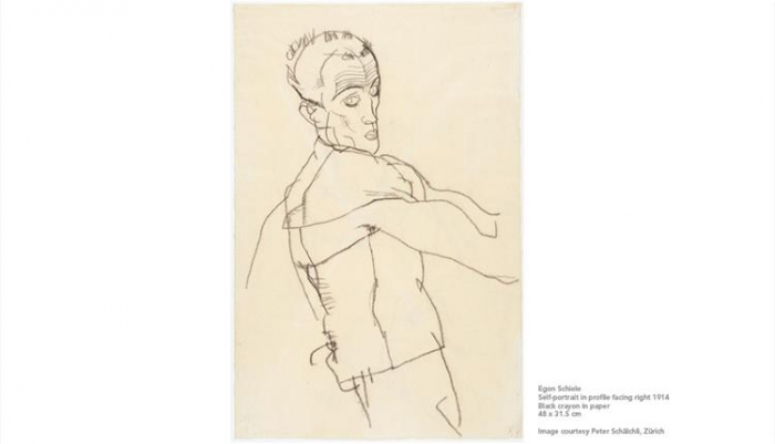 Tate Liverpool at 30: Egon Schiele and Francesca Woodman