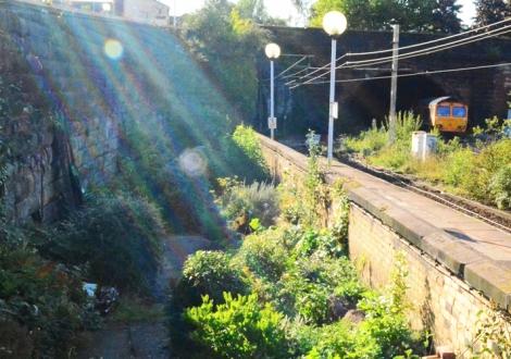 Edge Hill Station Garden Launch