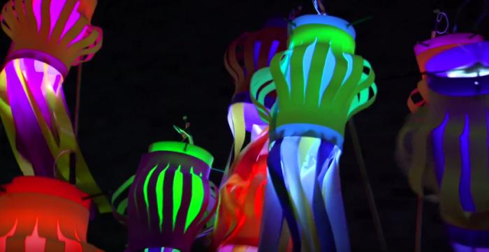 LANTERN COMPANY – Create your own lantern