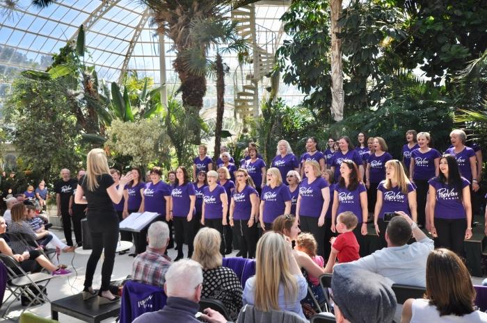 Local Choir 'Sing It Out' Through Lockdown!
