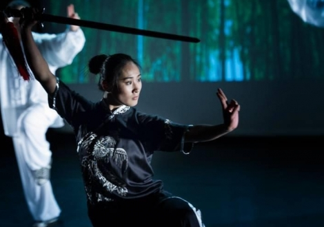 Tai Chi & Wushu Martial Arts Performance