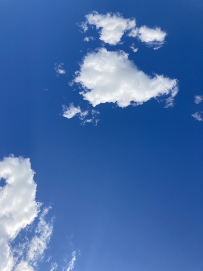 Tate Liverpool joins galleries around the world for Yoko Ono's T.V. to See the Sky