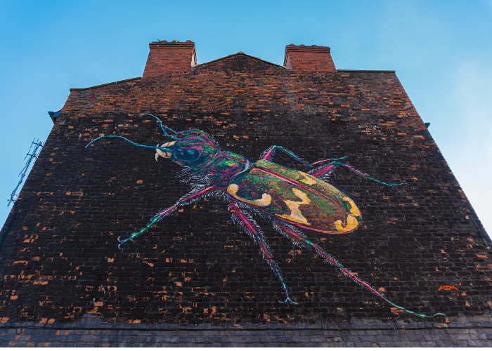 Young campaigners create Liverpool wildlife mural to highlight climate emergency