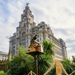 public artwork bird box with a wooden bird on top in front of the royal liver building