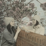 charlotte corrie and christina grogan illustrated in art form looking over a wall at each other with pink blossom tree